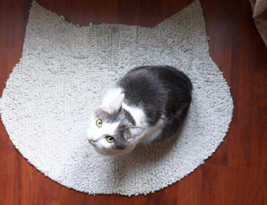 diy tapis pour chat